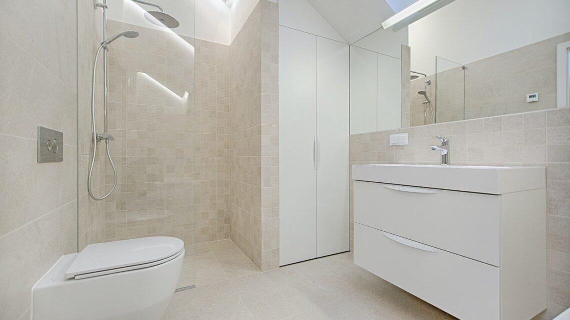 Dusch WC: Wie es Ihr Bad bereichern kann