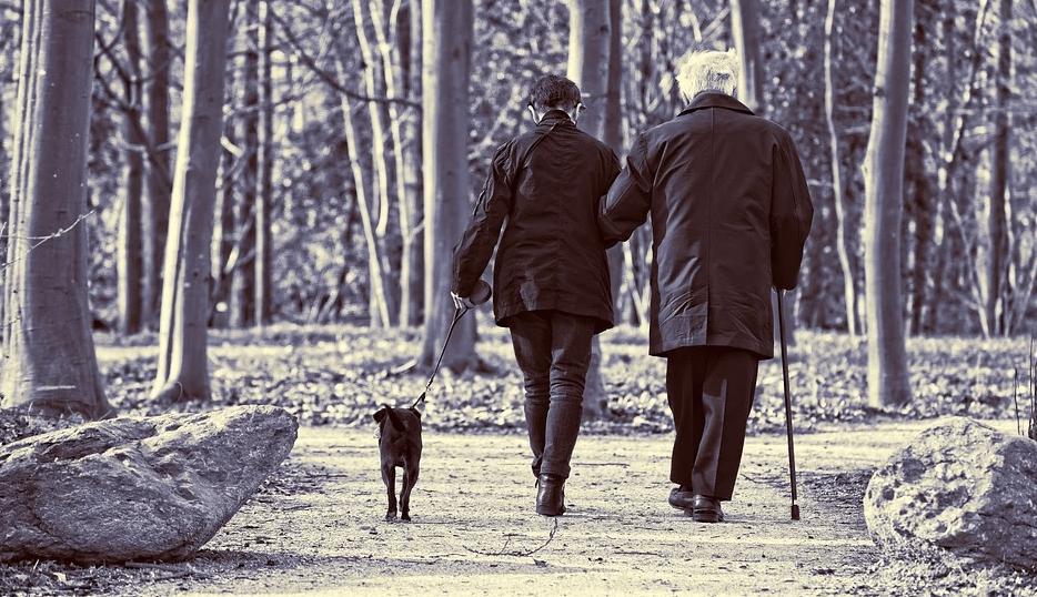 Bestellen Sie Gehstöcke Onlineshop Produkte im Vidima Senioren Online